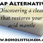 Soap Alternatives | Boholistic Mom