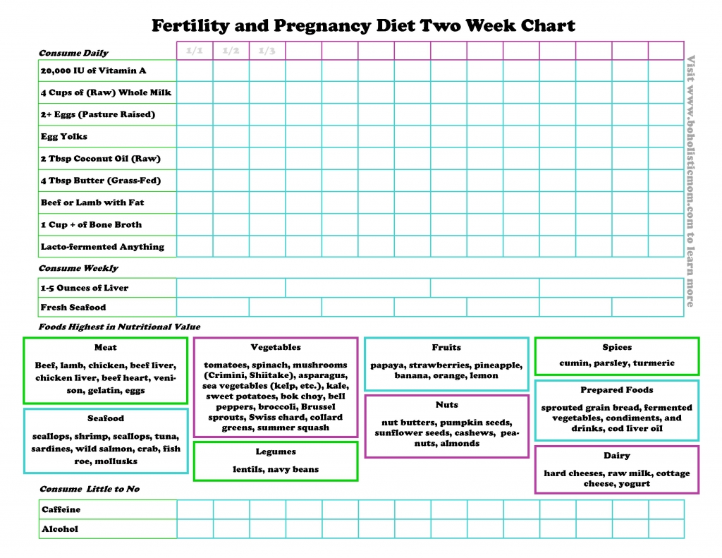 Fertility Diet and Pregnancy Diet | Boholistic Mom