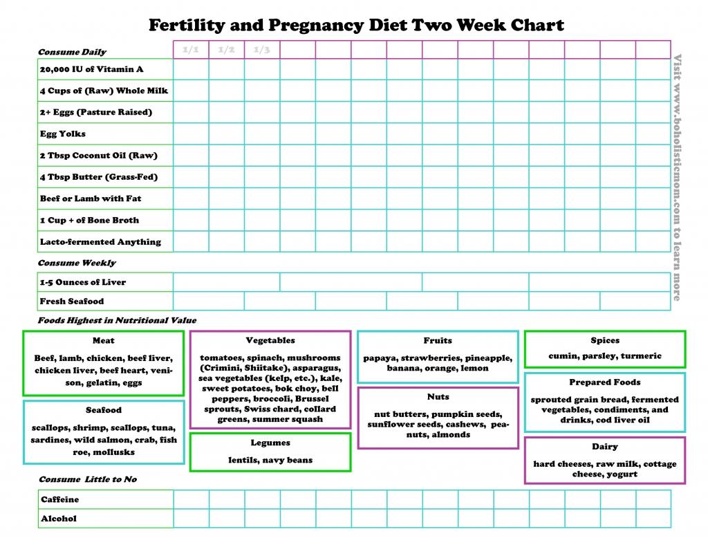 Fertility Diet and Pregnancy Diet | Boholistic Mom