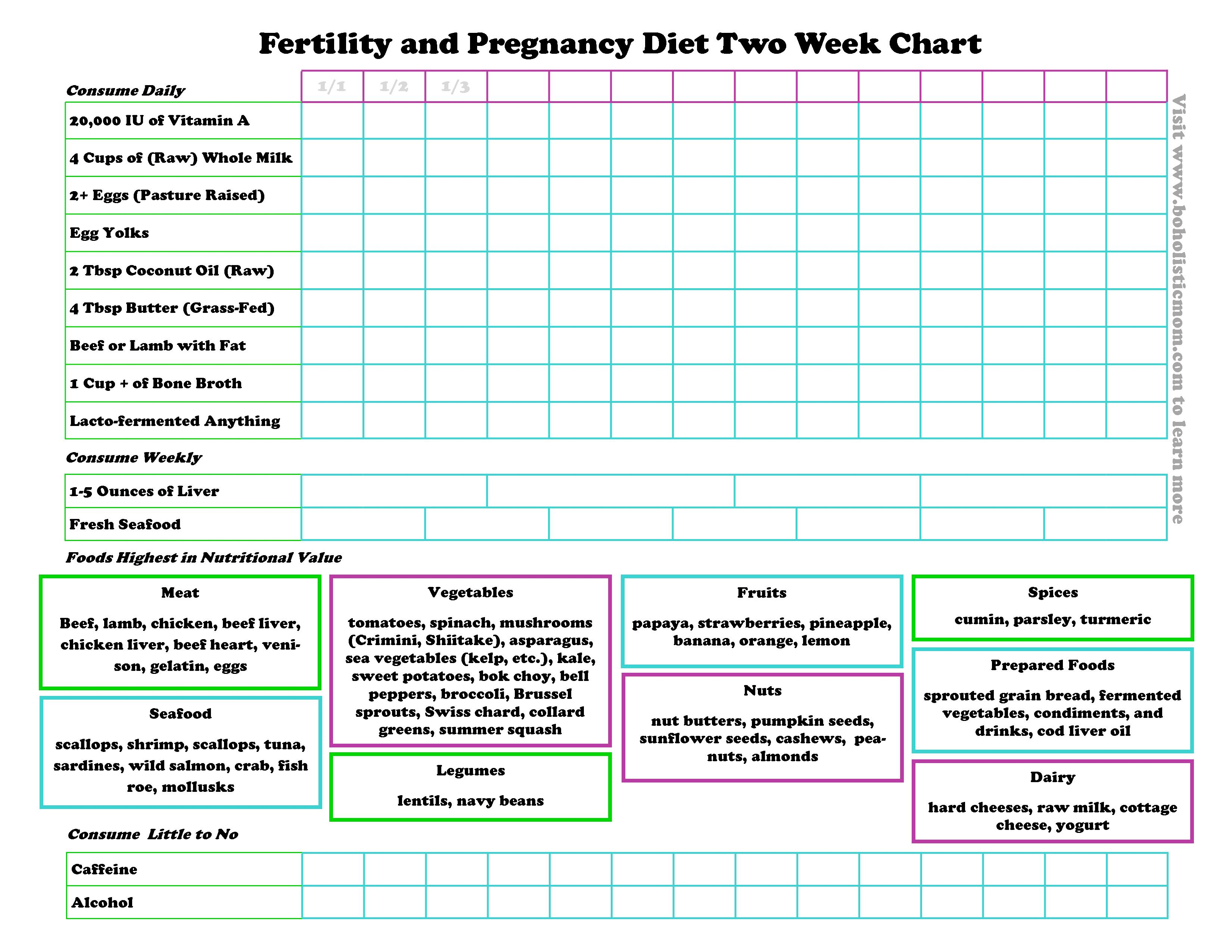Boholistic mom fertility diet the plan for a healthy pregnancy fertility diet and pregnancy diet boholistic mom nvjuhfo Image collections