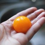 Egg Yolk | Boholistic Mom