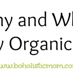 Organic Foods | Boholistic Mom