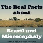 Brazil and Microcephaly | Boholistic Mom