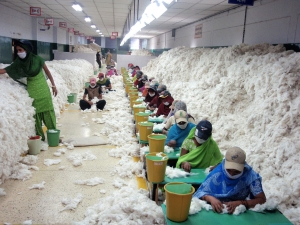 india, cotton, mill, fair trade