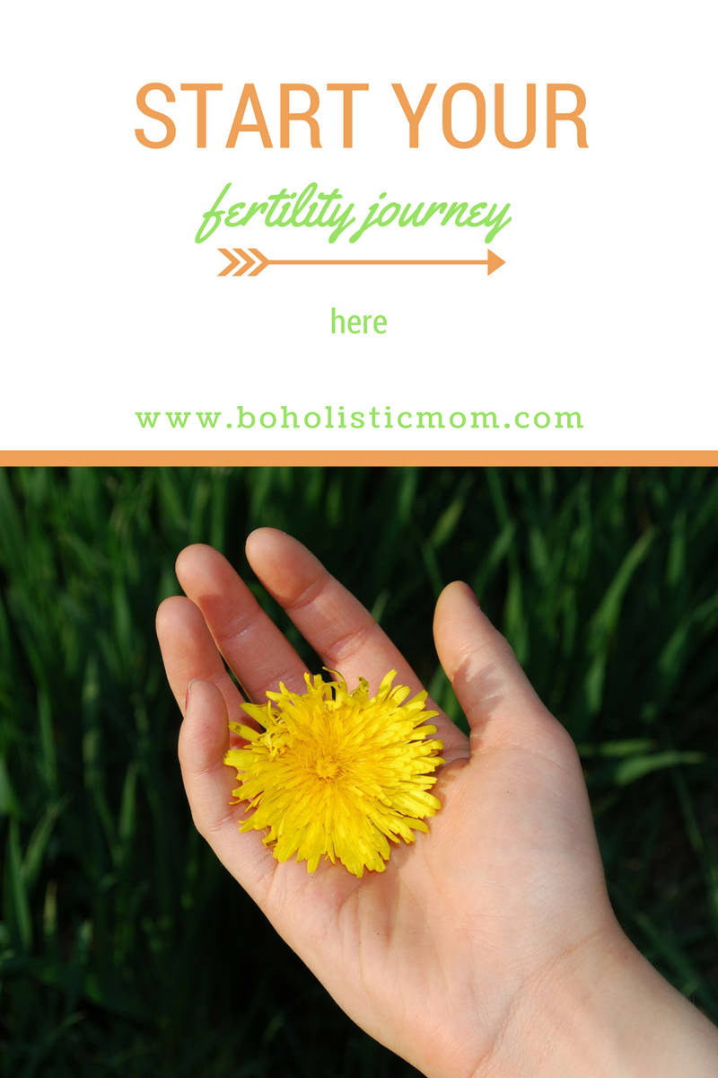 Begin Your Fertility Journey Here --> www.boholisticmom.com/main