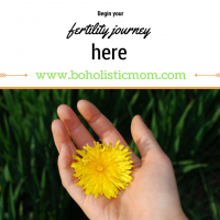 Fertility Journey – Begin Moving Forward Here