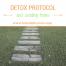 Detox Protocol - Fibromyalgia