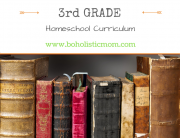 Homeschool Curriculum Choices from a 3rd grade teacher
