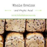 Whole Grains and Phytic Acid – Process grains naturally