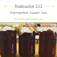 Kombucha 101 – Fermented Sweet Tea